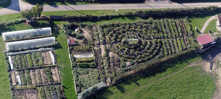 Joindre l'utile à l'agréable avec la permaculture
